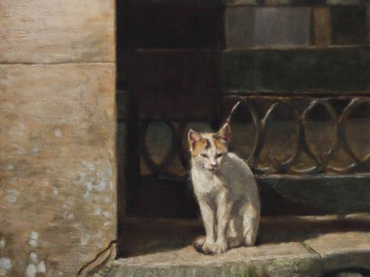 Sicilian cat Erice